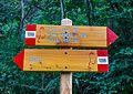 Bergtocht van Cogolo di Peio naar M.ga Levi in het Nationaal park Stelvio (Italië) 04.jpg