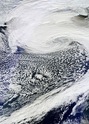 November 2014 Bering Sea cyclone - The extratropical cyclone nearing its peak intensity