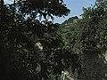 Beroun-Tetín-Srbsko - panoramio (29).jpg
