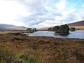 Beside Loch Ossian - geograph.org.uk - 265362.jpg