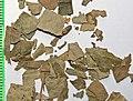 Betulae folium by Danny S. - 001.jpg