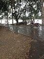 Bhopalwala Nehar IMG 0988.jpg