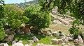Bierain Sub-District, Jordan - panoramio (9).jpg