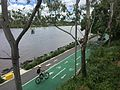 Bikeway & footpath along Brisbane River in Milton, Qld 01.JPG