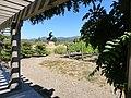 Black Stallion Winery, Napa Valley, California, USA (7664985668).jpg