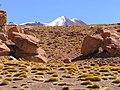 Bolivian Altiplano 2005 - panoramio (7).jpg