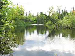 Bonnechere River.jpg