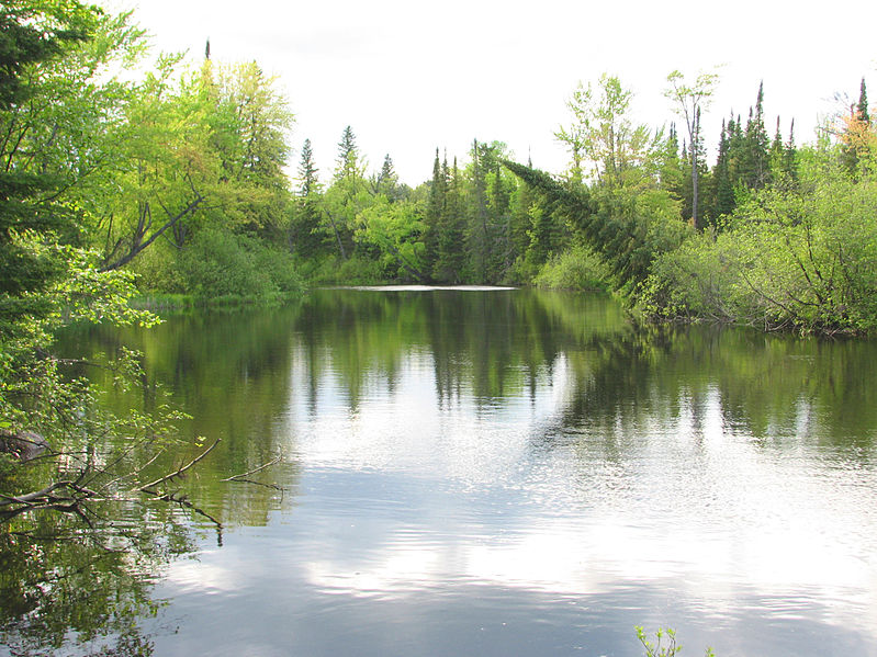 File:Bonnechere River.jpg