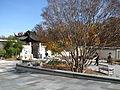 Bonsai United States National Arboretum 4.JPG