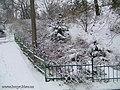 Botanic Garden in winter - panoramio - eugeneloza (3).jpg