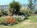 Botanic Gardens and Hothouses - geograph.org.uk - 127459.jpg