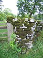 Boundary stone on Green Gate - geograph.org.uk - 720484.jpg