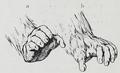 Braus 1921 313.png