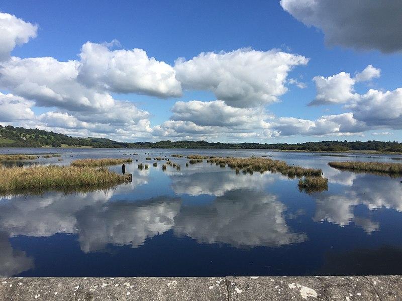 File:Bridge east view.jpg