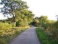 Bridleway Looking North - geograph.org.uk - 240600.jpg