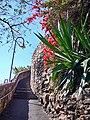 Brisbane Kangaroo Point - panoramio.jpg