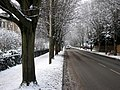 Brooklands Avenue in the snow - geograph.org.uk - 2203754.jpg