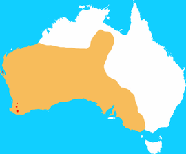 Brush-tailed Bettong distribution map 2011.png