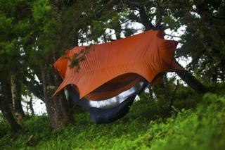 Tree tent