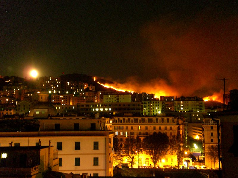 File:Bush fire- Genoa 2009.JPG
