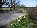 Buttercrambe Road - geograph.org.uk - 1801395.jpg