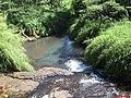 Córrego Saõ Francisco ou da Divisa sempre margeando a vicinal Jardinópolis e Brodowski - panoramio.jpg