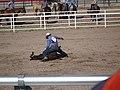 CFD Tie-down roping Cowboy No. 577 -2.jpg