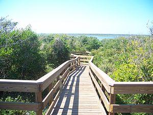 CNS Turtle Mound boardwalk06