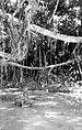 COLLECTIE TROPENMUSEUM Een tweetal beelden in ondiep water in Noord-Sumatra TMnr 10000890.jpg
