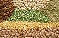 CSIRO ScienceImage 3224 Pulses and legumes.jpg