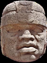 Cabeza Colosal nº1 del Museo Xalapa - blank.png
