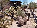 Calico Ghost Town 2012 (19).jpg