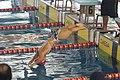 Campeonato de España de Natación Paralímpica por Selecciones Autonómicas 2015 F 03.JPG