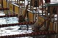 Campeonato de España de Natación Paralímpica por Selecciones Autonómicas 2015 j 09.JPG