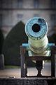 Cannon (11851198935).jpg