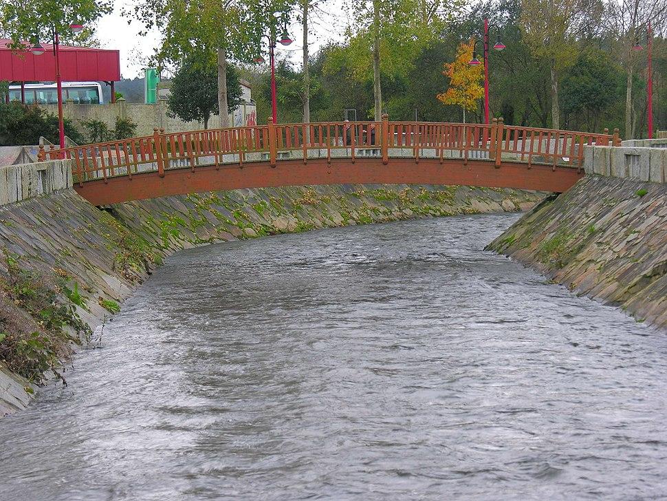 Carballo Galicia