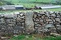Carnguwch Fawr - geograph.org.uk - 415908.jpg