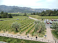 Castello di Amorosa Winery, Napa Valley, California, USA (6782731790).jpg