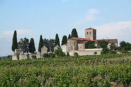 Saint Etienne Church of Caussiniojouls, surrounded by vineyards