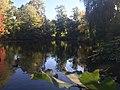 Central Park, New York, NY, USA - panoramio (186).jpg
