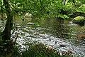 Chagford, the river Teign - geograph.org.uk - 2090850.jpg