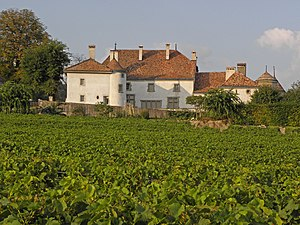 Bursins - Chateau du Rosey and its vineyards in Bursins