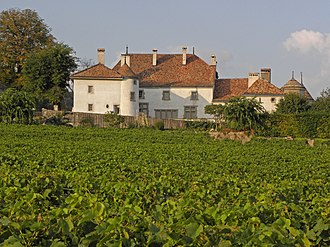 Bursins - Chateau du Rosey and its vineyards in Bursins