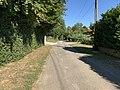 Chemin Guichardets St Didier Aussiat 2.jpg