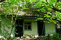 Chernobyl.house.JPG
