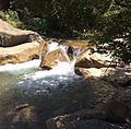 Chiffa national parc.jpg
