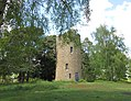 Chinthurst Hill Tower 3.jpg