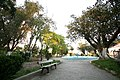 Chlef-jardin-public.jpg