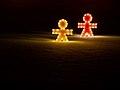 Christmas Lights (5325813982).jpg