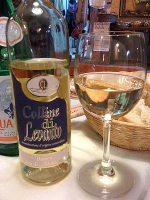 Liguria wine - A bottle of Colline di Levanto DOC white wine.